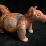 Histoire du Chihuahua et ses origines