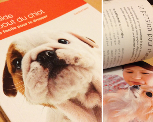 Guide-chiot