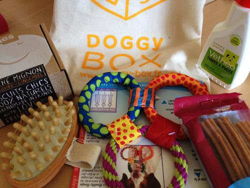 DoggyBox-Septembre