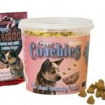 Les friandises pour chien dans l'éducation du chihuahua