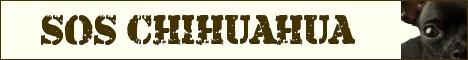 sos-chihuahua