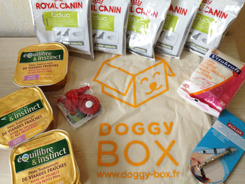 La-Doggy-Box-Octobre