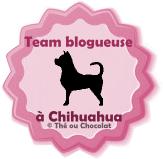 template-macaron-blog-chihuahua-3