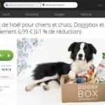 Le coffret de Noël Doggybox à 6,99 euros