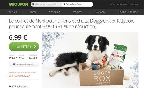 coffret box chien noël