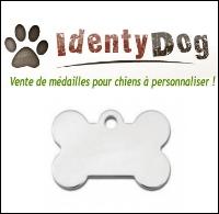 Médaille gravée pour chien : Identydog