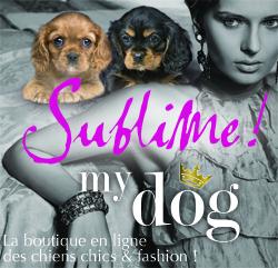 Vêtement pour chien - Sublimemydog