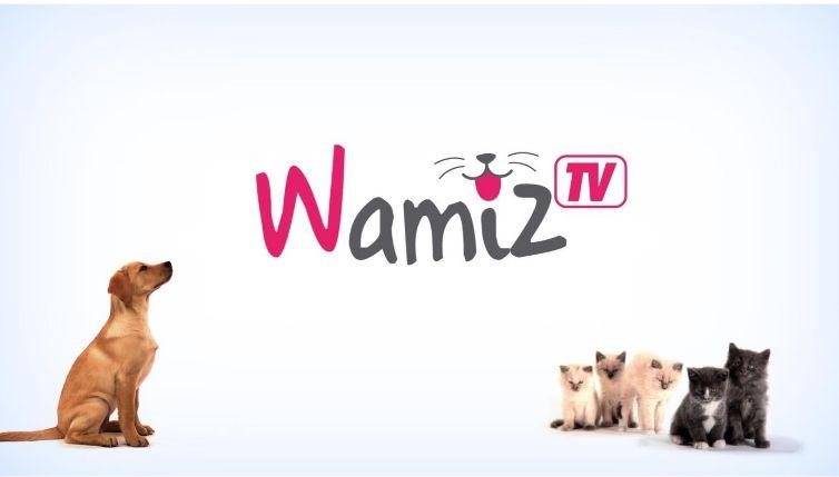 wamiz-tv